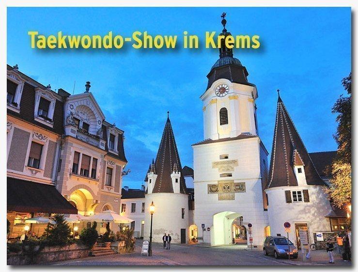 Taekwondo Show und Charity in Krems