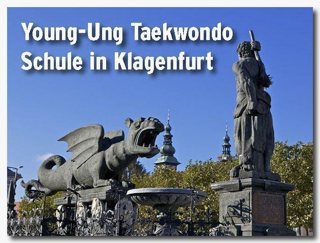 Young-Ung Taekwondo in Klagenfurt