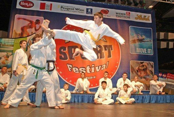 Bild zu Vienna Sportfestival