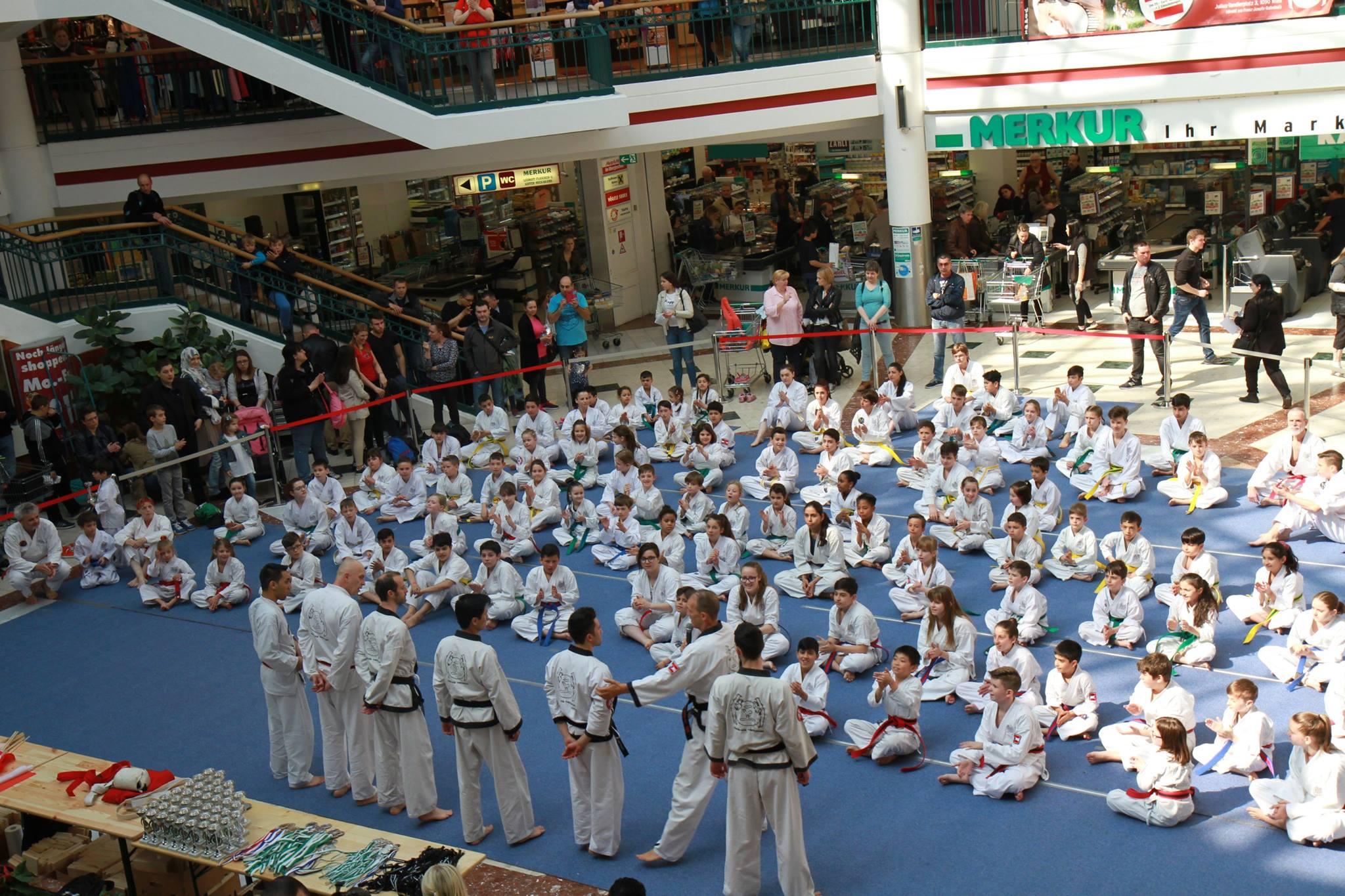 turnier, wien,taekwondo