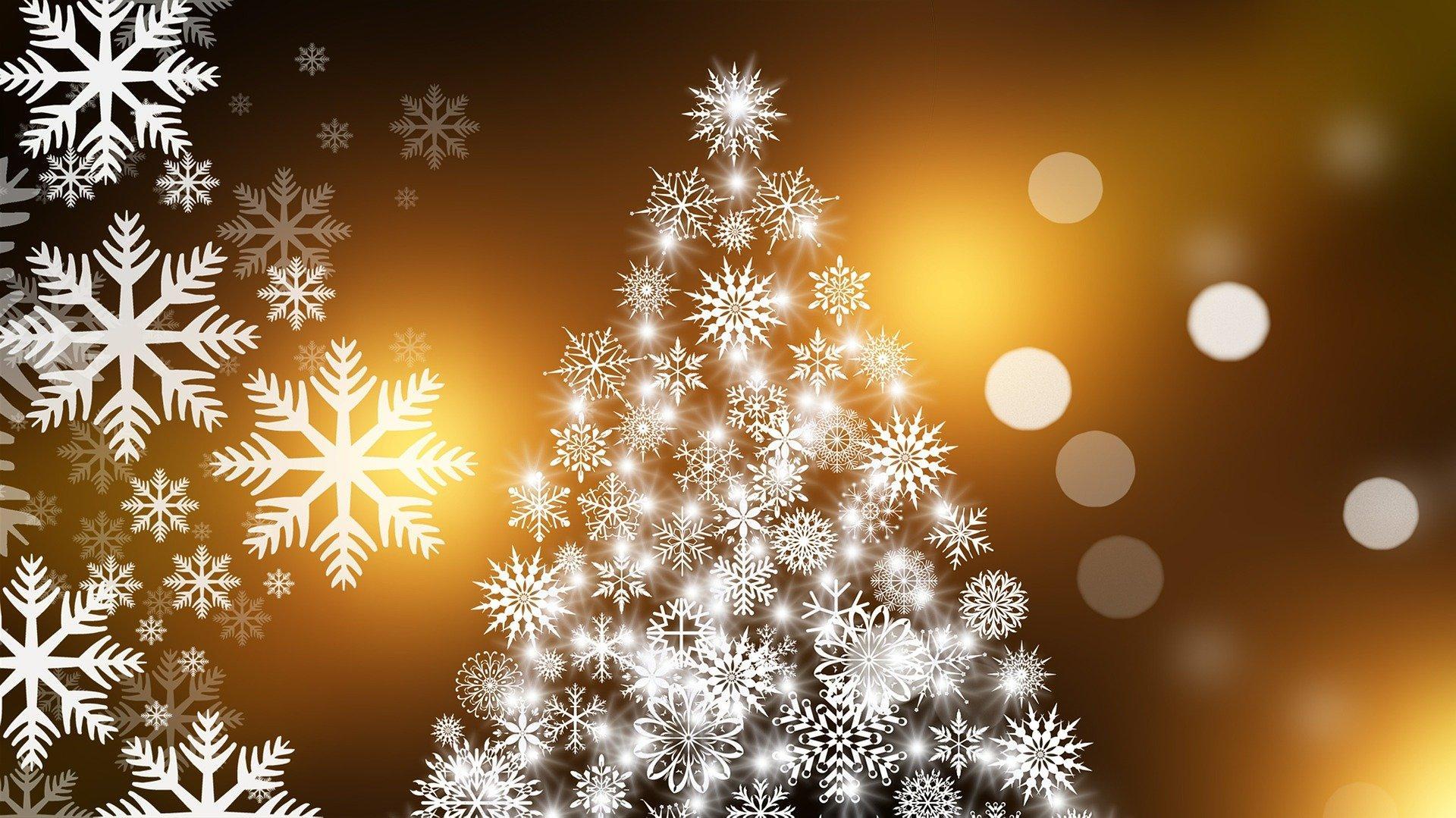 Bild zu Prüfungen, Winterturnier & Weihnachtslehrgang