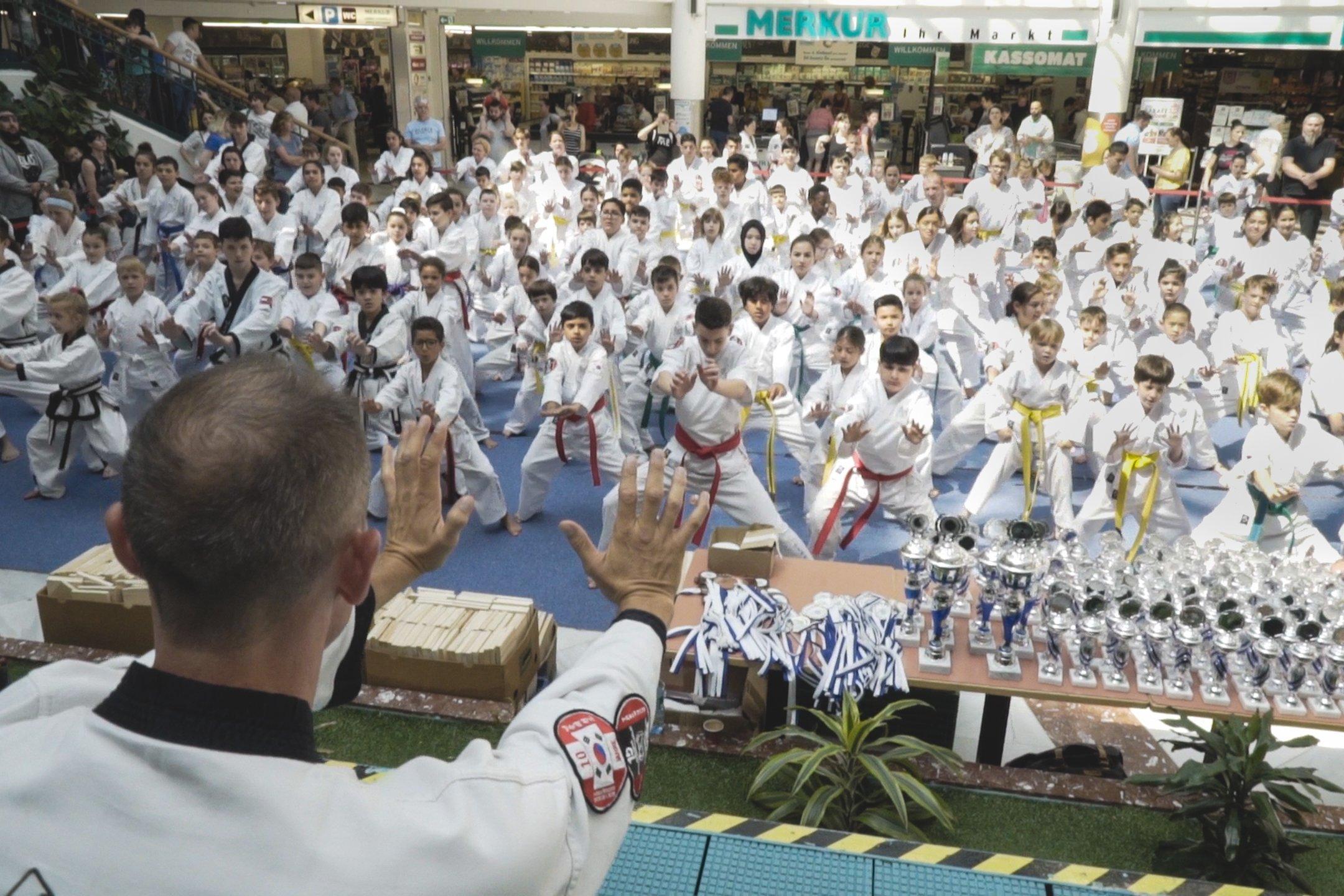 Sommerturnier Lugner City YOUNG-UNG Taekwondo Kampfsport
