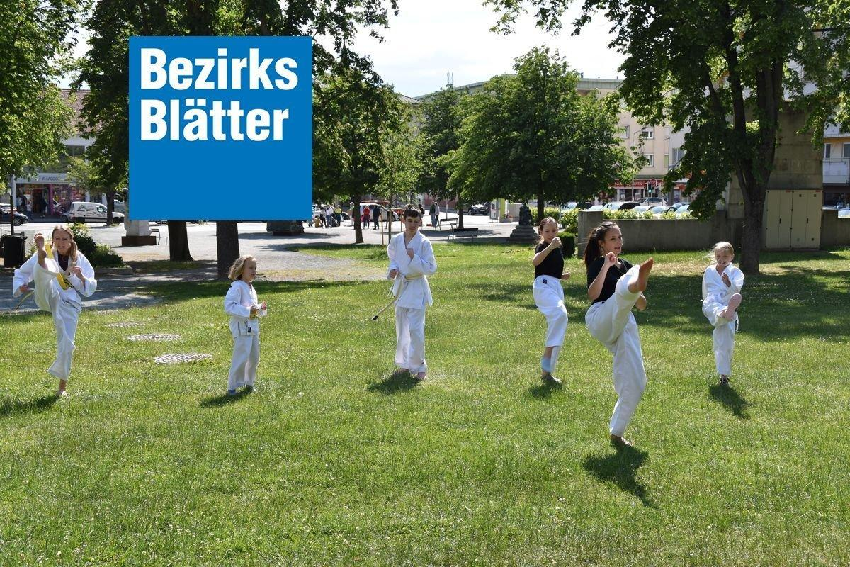 YOUNG-UNG Taekwondo Oberwart Outdoor-Training
