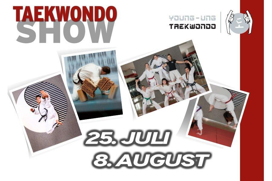 Bild zu Taekwondo-Show in der Lugner City